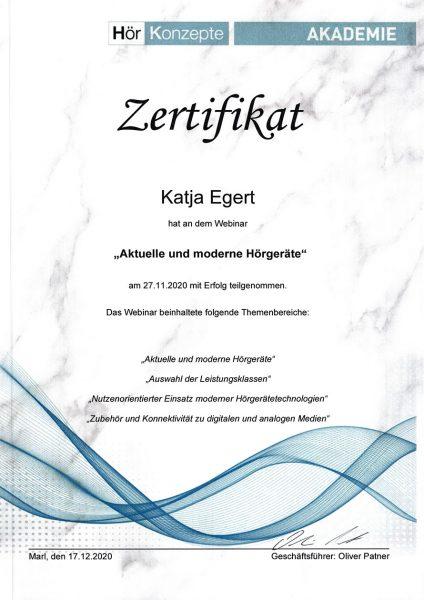 """Zertifikat Katja Egert: Webinar """"Aktuelle und moderne Hörgeräte"""" (Marl, 27.11.2020)"""